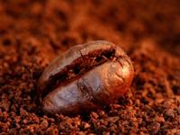 Вещество в зернах кофе