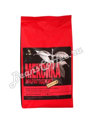 Кофе Gutenberg в зернах Мексика Марагоджип