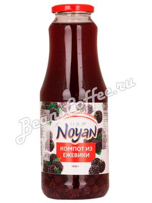 Компот Noyan Ежевичный 1050 гр